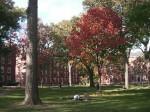 秋のハーバードヤード